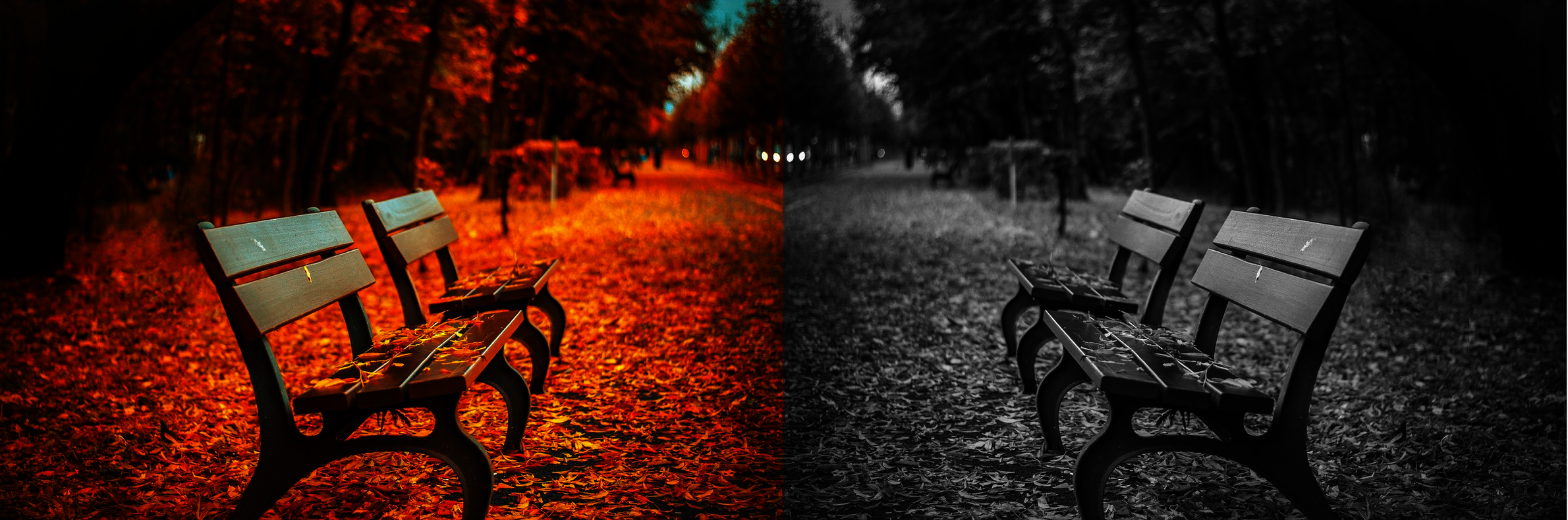 Herbst_Download.png